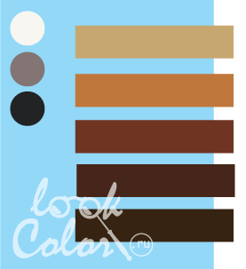 Сочетание светло голубого и коричневого