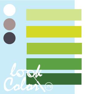Сочетание бело голубого и теплого зеленого