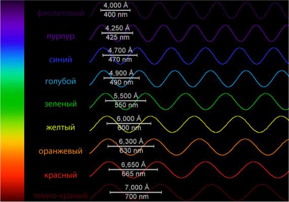 Длина и цвет волны