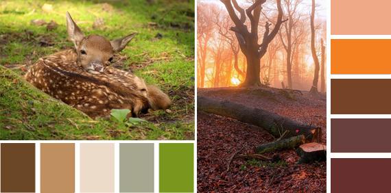 Теплые и холодные цвета цвет