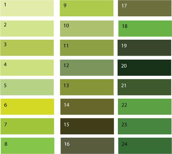 Цвет зеленый оттенки